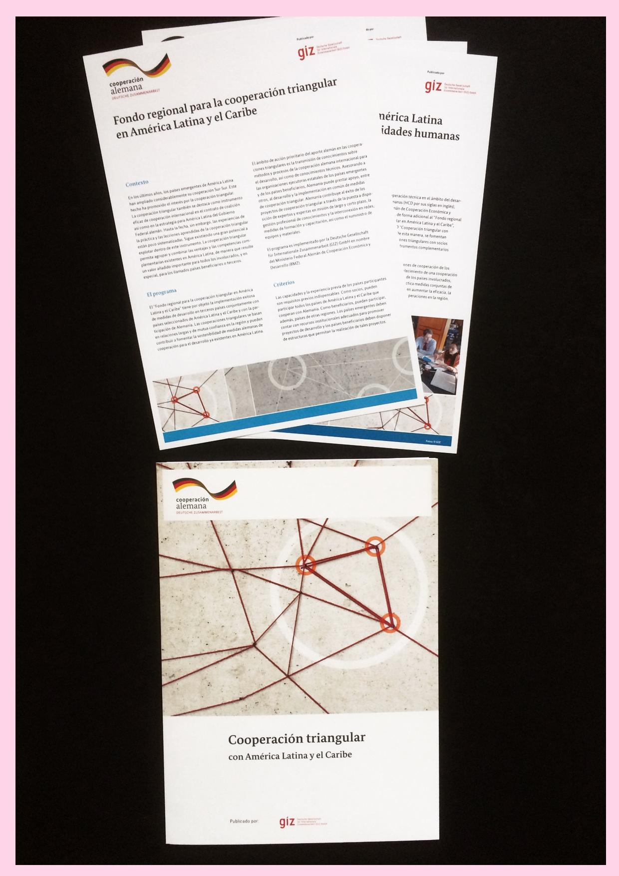 Factsheets und Broschüre der GIZ