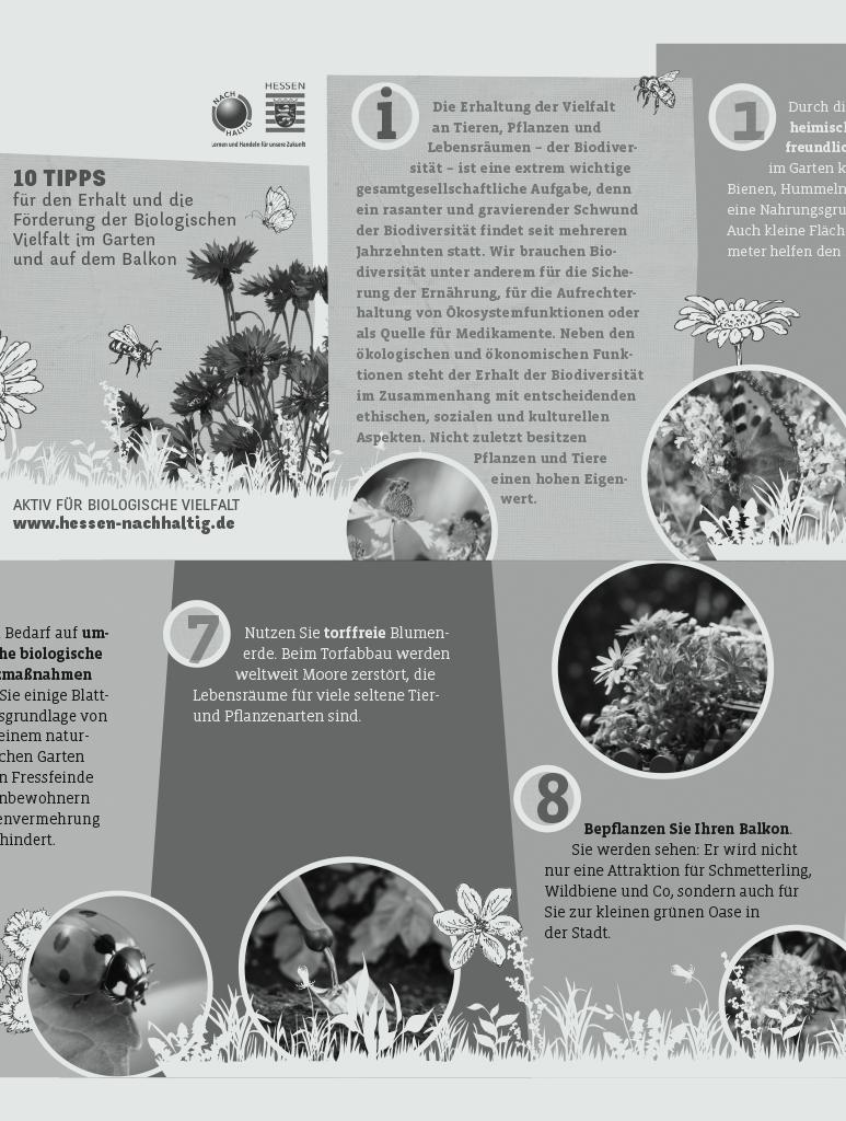 """Faltflyer """"10 Tipps für Biologische Vielfalt"""""""