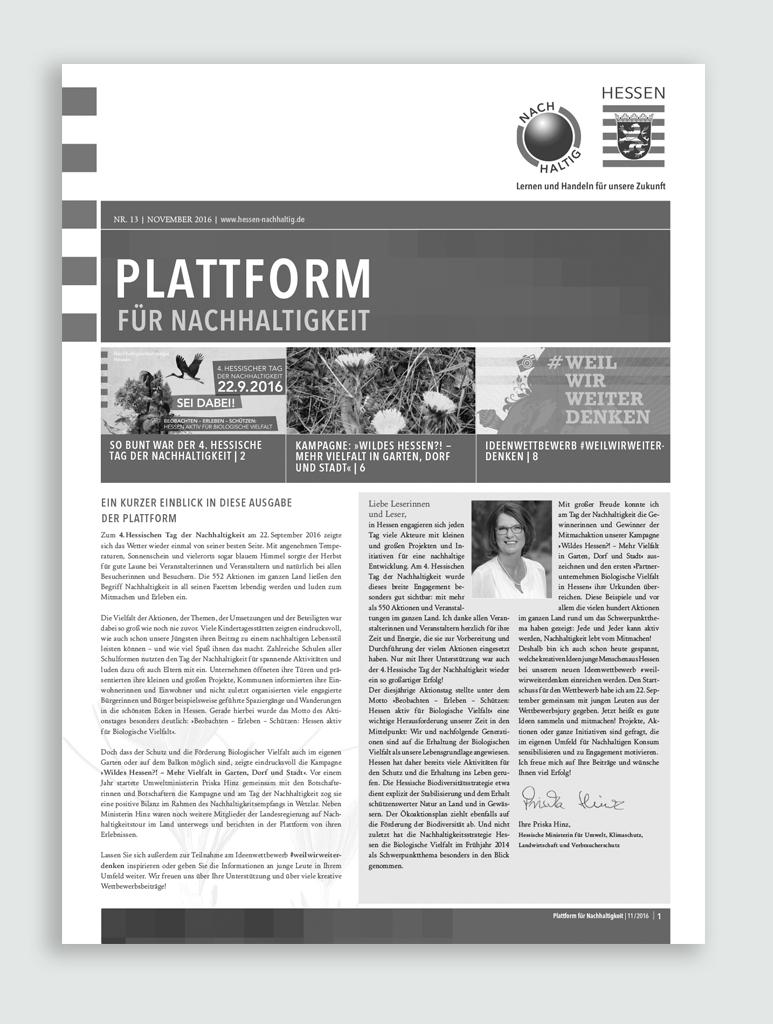 """Publikation """"Plattform für Nachhaltigkeit"""""""