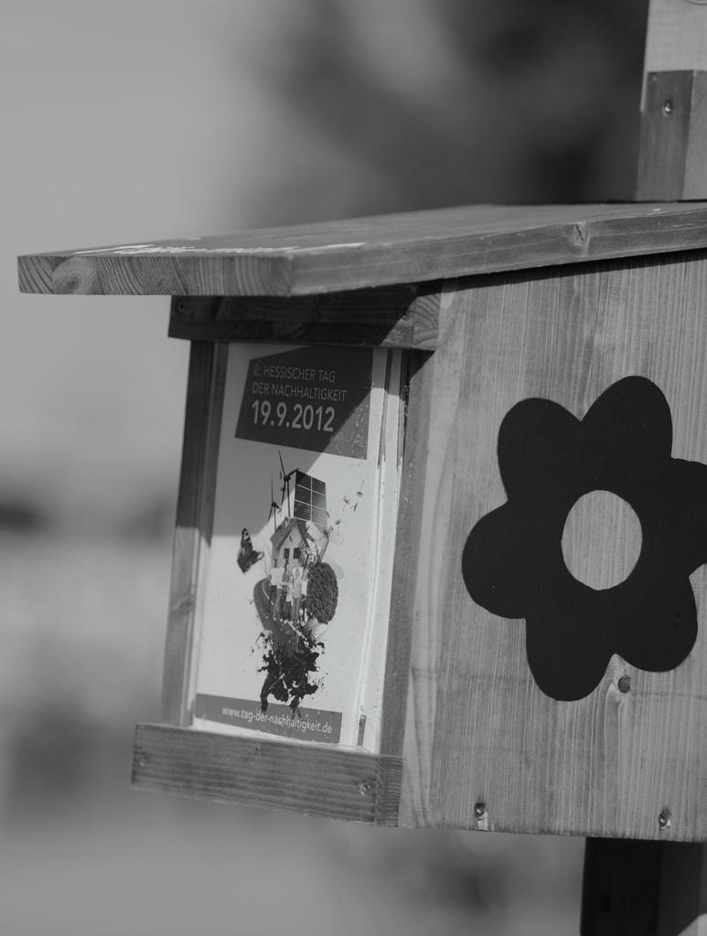 Infoflyer-Spemder aus einem Holznistkasten